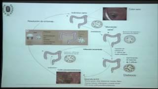 inhibitory interneuron