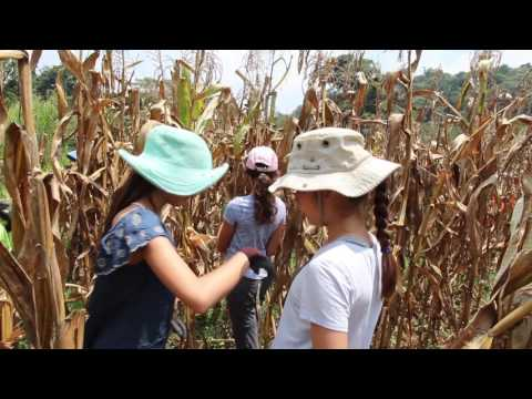 ViviendasLeon, Mission & Global Education Trips