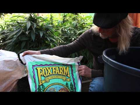 Grow Cannabis – Mixing Soil – by Jorge Cervantes