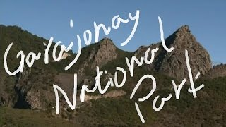 1分世界遺産 139 ガラホナイ国立公園 スペイン⑬