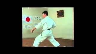 Shitoryu Karate Kata - Heian Nidan