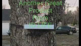 Tree Shelf Video.wmv