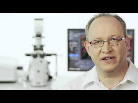 ZEISS LSM 880 with Airyscan: Product Trailer