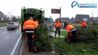 Kerstbomen ophalen in de storm in Assen