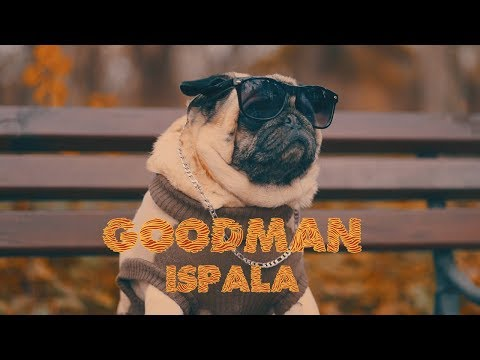 GOODMAN - ISPALA