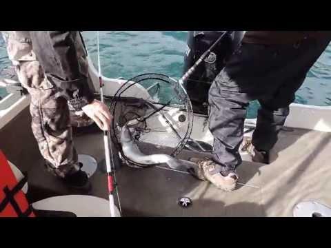 Upper Arrow Lake Fishing April 2013
