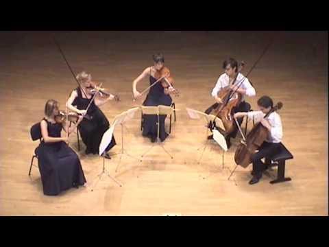 Matisse Quintett - Adagio, F. Schubert String Quintet D.956