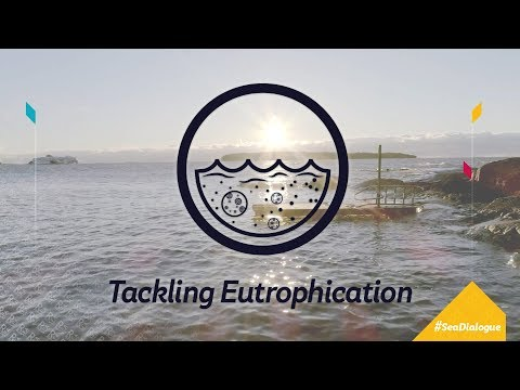 Tackling Eutrophication