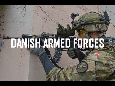 Danish Armed Forces 2017
