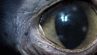Лучшие фильмы об инопланетянах и премьера  Балерины    Индустрия кино  от 27 01 17
