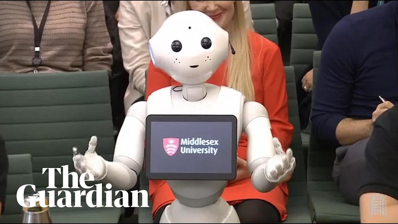 Pepper the robot answers MPs' questions – video