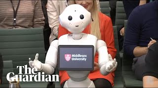Pepper the robot answers MPs' questions