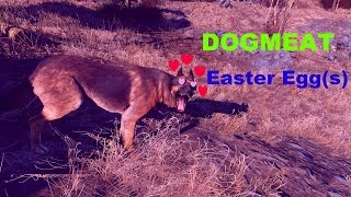 Dog meat Easter egg | fallout 4