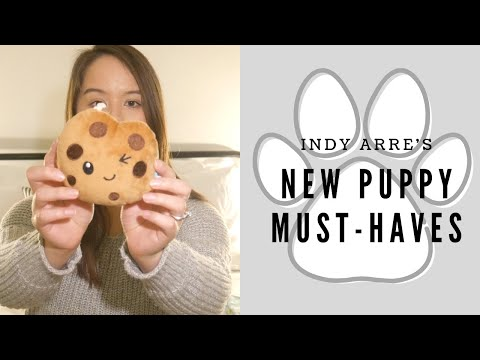 new-puppy-must-haves