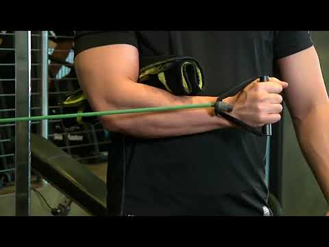 Internal Rotation with Band   Exercise Videos & Guides   Bodybuilding com