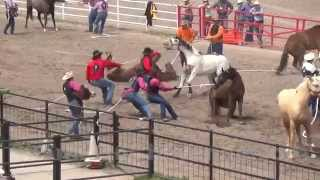 2015 Cheyenne Frontier Days Rodeo