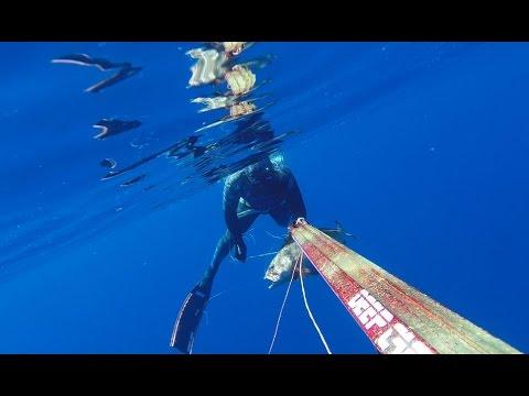 Spearfishing - SeaDevil 95
