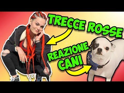 Faccio le TRECCE ROSSO FUOCO e il mio CANE NON MI RICONOSCE! , Duration 18  minutes.