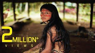Amazon Jungle And Amazon River Documentary Urdu/Hindi 2017