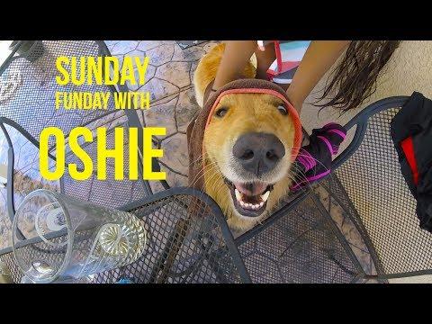 SUNDAY FUNDAY | Oshies World