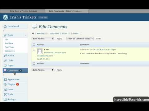 WordPress Tutorial: Approving and Editing Comments