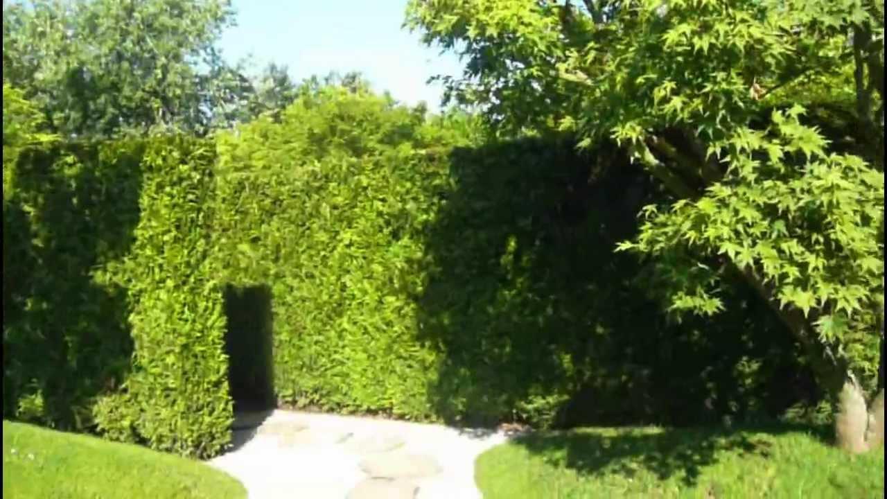 b japanischer garten japanese garden g rten der welt erholungspark marzahn youtube. Black Bedroom Furniture Sets. Home Design Ideas