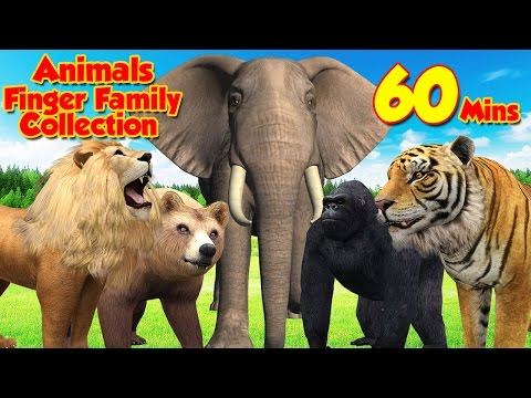 Animals Cartoons | Animals Finger Family Nursery Rhymes | Animals Finger Family Songs For Children