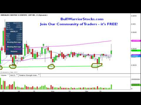 bio-matrix-scientific-group,-inc.-(bmsn)-penny-stock-trading-chart_9/25/2013