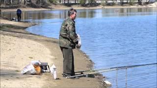 Рыбалка в Кубани. Краснодарский Затон(Краснодарский Затон - это залив реки Кубань в черте гор. Краснодара. На берегах Затона всегда есть рыболовы,..., 2015-04-11T21:41:28.000Z)