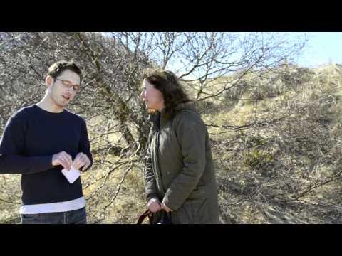 Anna Ulmestrand -- intervju och praktiska tips