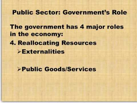 Basics of the Government Role in the Economy