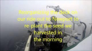 Farming Mussels in Rhode Island