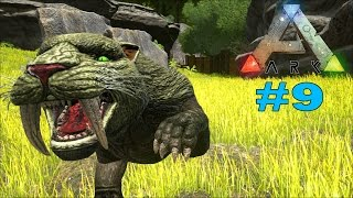 SABERTOOTH TAMING!!! CRAZY KITTY! Ark Survival Evolved EP 9 (Ark Gameplay)