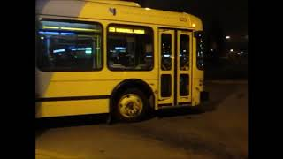 Brampton Transit Zum, Go  Transit, TTC, & York Region Transit/Viva thumbnail