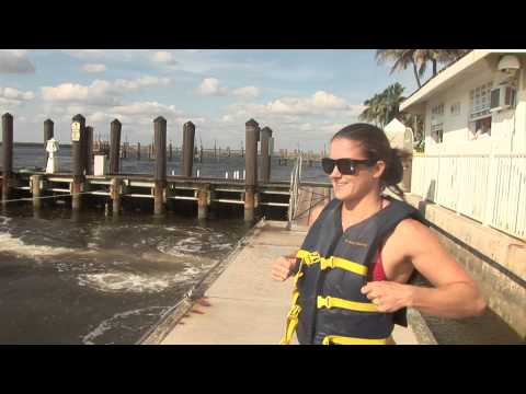 Must Do Visitor Guides Holiday  Water Sports Adventure Tours, Ft. Myers Beach