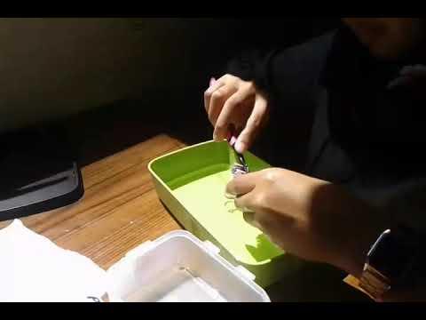 Cara Membersihkan Cincin Pake Pasta Gigi