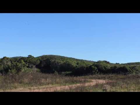 Terrenos en Punta Colorada