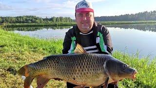 Я НИКОГДА в жизни не ловил сома на 27 кг Рыбалка в Беларуси Кого можно поймать