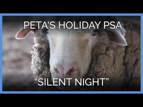 Silent Night | PETA
