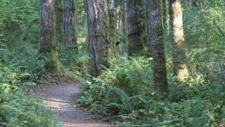 Best Trail Running Instructional Video