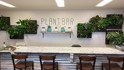 🔴 Grand Opening Plant Bar Az | New Shop Space