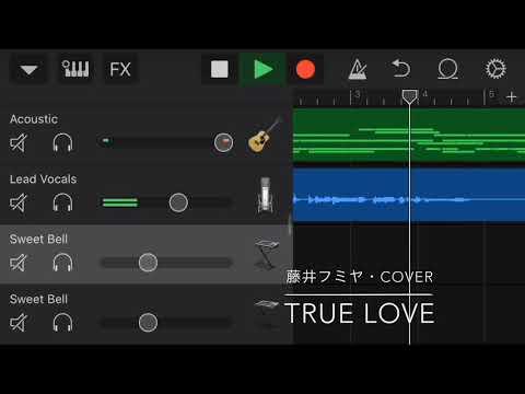 TRUE LOVE / 藤井フミヤ を歌ってみました。