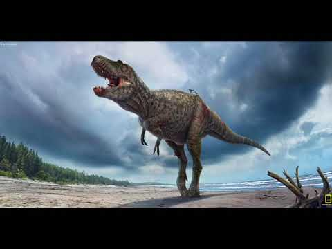 Tribute to Tyrannosauridae