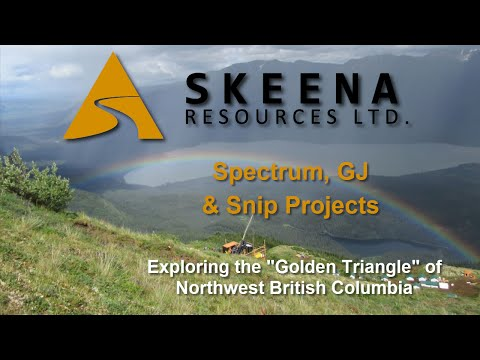 Skeena Resources Announces Maiden Resource Estimate for Spectrum Gold-Copper Deposit