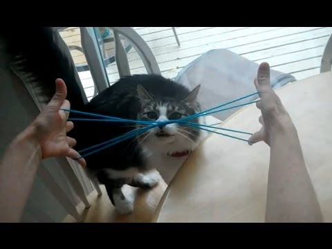 How to do Cat Whiskers, with string, step by step Kitty Whiskers