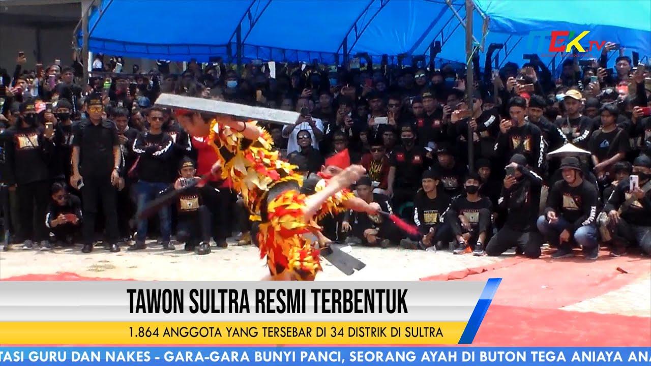 Tawon Sultra Resmi Terbentuk