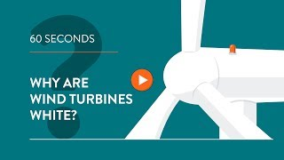 Why are wind turbines white? - IN 60 SECONDS