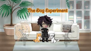 The Dog Experiment I GLMM ((Original))