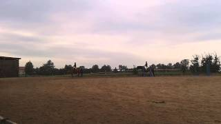 Fragment lekcji jazdy konnej w Żarnowie!