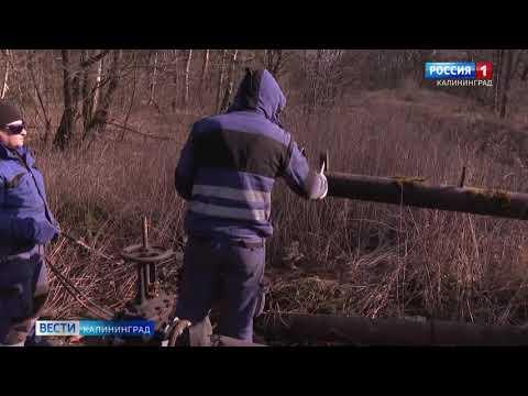 Прокуратура выявит источник слива нечистот в районе бывшего полигона ТБО